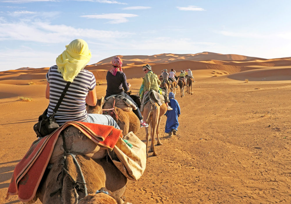Top tour destinations in India to plan in this winter!!!